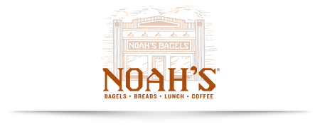 Noahs_portfolio_page_logo